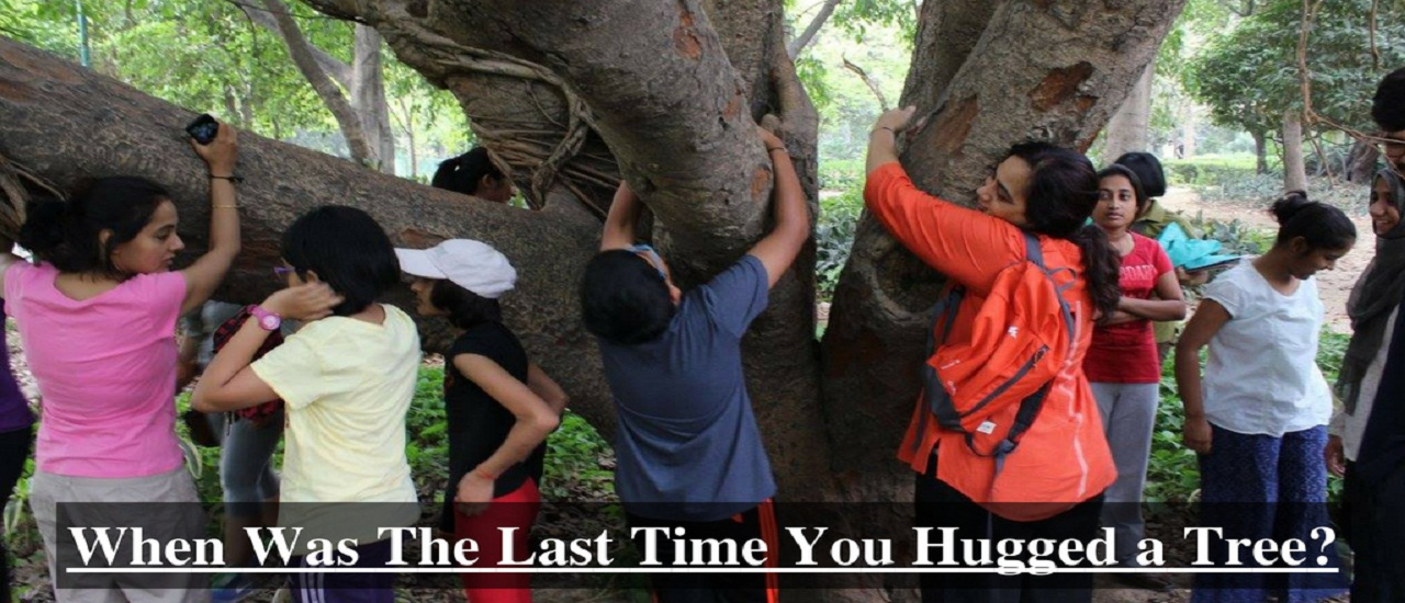 New Delhi Nature Society_Tree Climbing Activity for Kids in Delhi