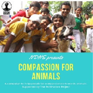 New Delhi Nature Society NGO-Save & Rehabilitate Animals in New Delhi