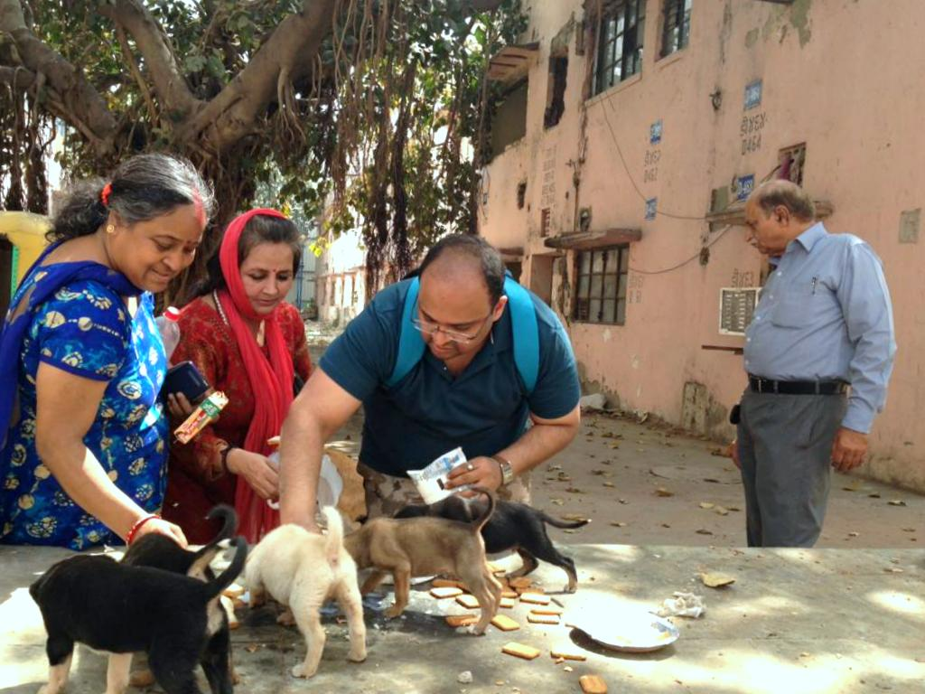 Dogs from Netaji Nagar