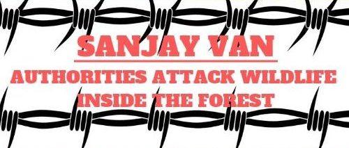 SANJAY VAN AUTHORITIES ATTACK WILDLIFE INSIDE THE FOREST (2)